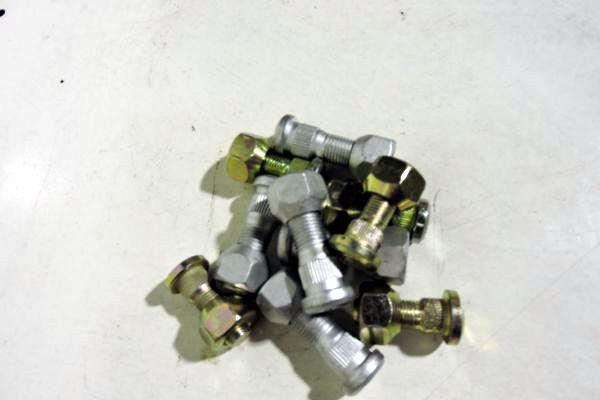 stupitsyE1265428-EB60-1802-F9DF-F19087DF0F2C.jpg